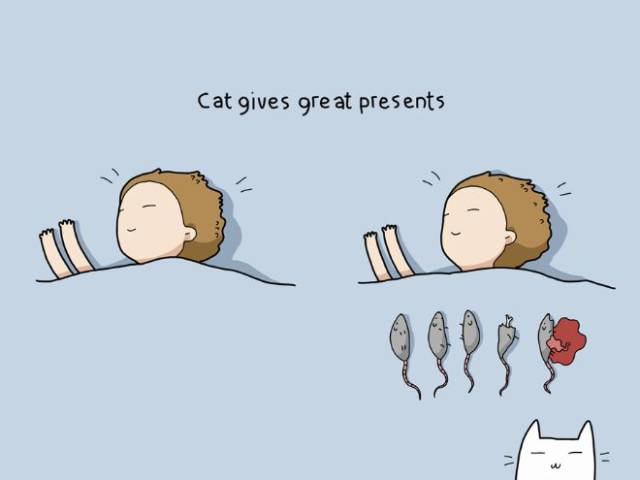 Living With A Cat Is Hard And Unthankful