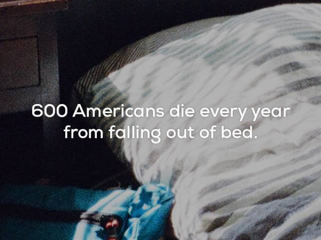 These Facts Are So Awful…