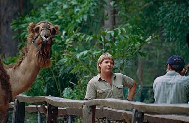 The Legend Of Steve Irwin