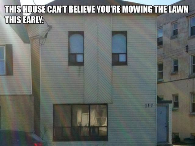 Houses That Are In Complete Disbelief