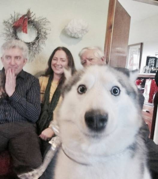 Photobombs Are Only Making Photos Better