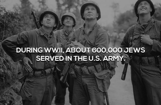 People Don't Know Many Facts About World War II