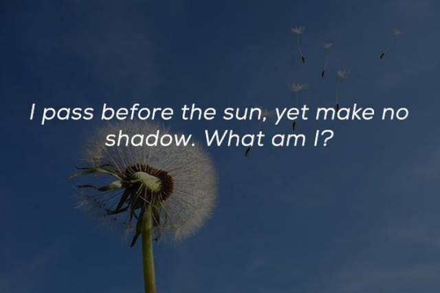 Riddles To Give Your Brain Something To Do