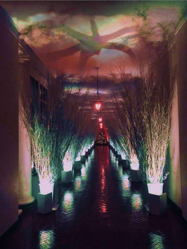 Cheap melania trumpus white house christmas decorations have generated quite a response from the internet with deco noel maison