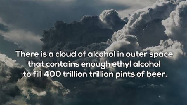Tipsy Facts About Alcohol