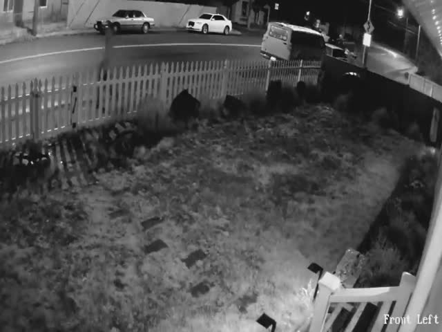 Package Thief Gets A Proper Treatment