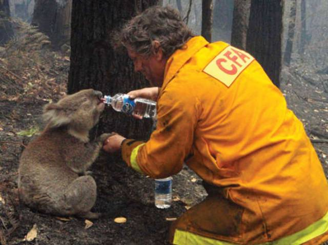 Heartwarming Pictures That That Go Straight to Your Heart