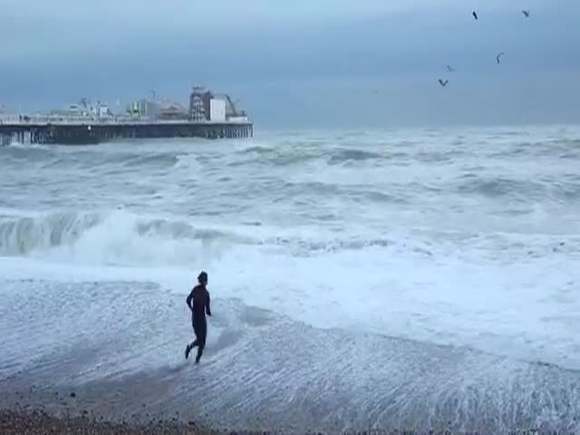 Dog Being Saved From A Stormy Sea