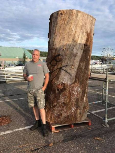 It's Hard To Believe That This Was Carved From A Tree!