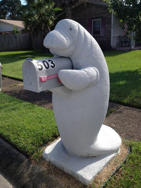 This Manatee Mailbox Might Be Just The Most Bizarre And Adorable Thing Ever