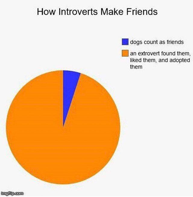 Introverts – Those Who Need No Other Humans Around