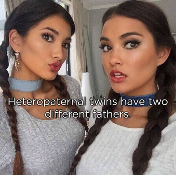 Identical Facts About Twins