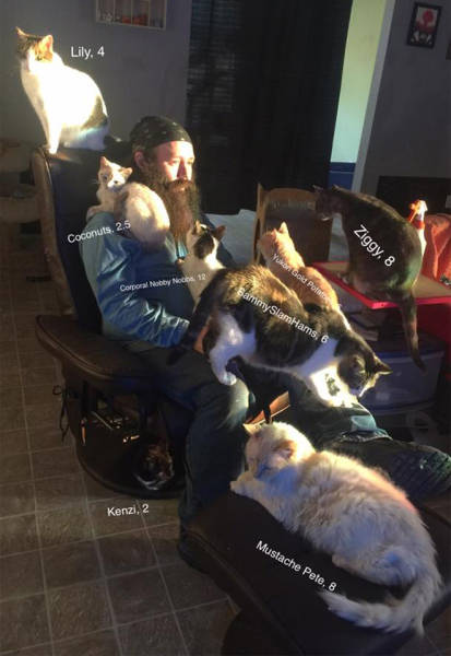Here's Mr. Karls And His Home For Abandoned Cats!