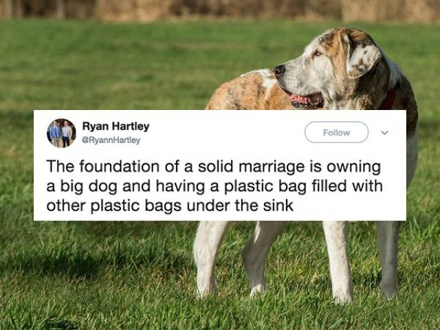 "Tweets Show That Marriage Is A ""Beautiful"" Thing"