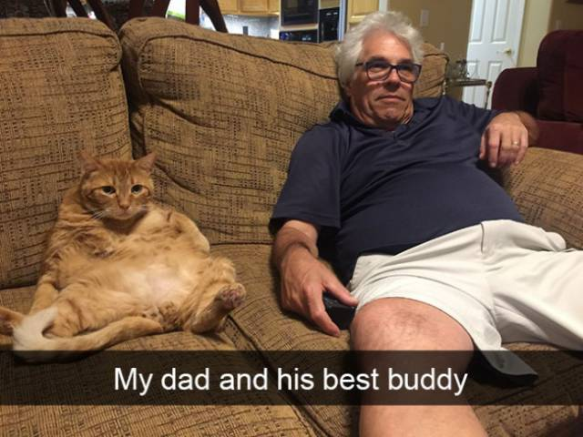 Cat Snapchats That Show Every Little Detail Of Living With A Cat