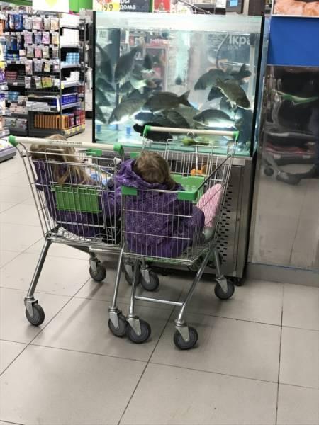 Children Always Make Sure Everybody's Having Fun