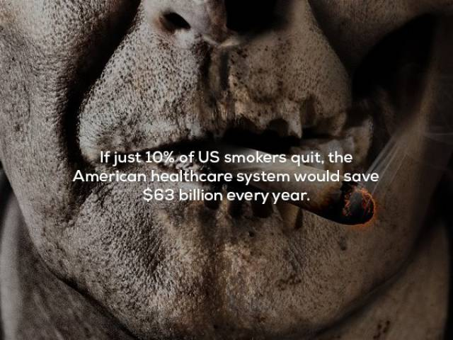 Scary Facts That Are Not For Kids