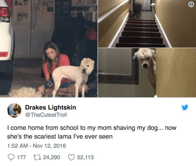 These Tweets Give Us Hope That Maybe Teen Generation Is Not Completely Lost After All…