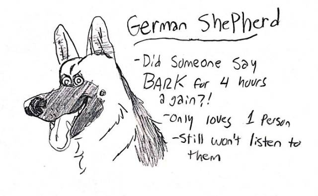 Funny Way To Know All The Dog Breeds