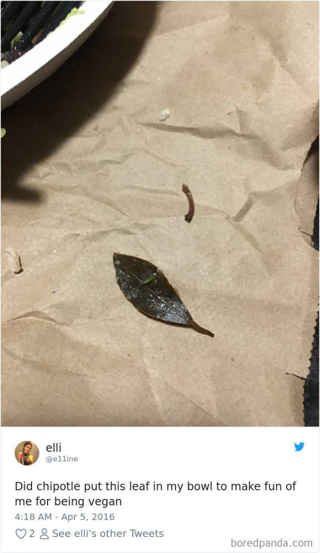 People Are Shocked After They Found Leaves In Their Chipotle