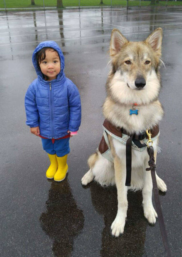 Kids And Dogs Are A Perfect Combination!