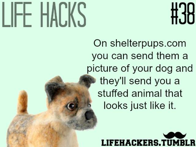 Lifehacks Always Improve Something In Your Life