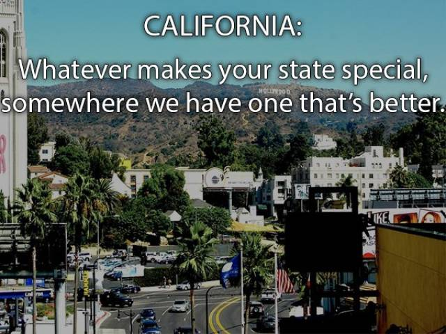 American States Couldn't Be Described Better Than By Their Own Residents