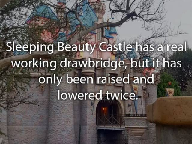 Disneyland Is Full Of Entertaining Facts