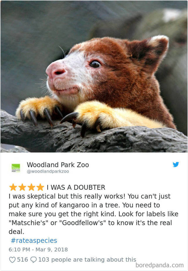 Zoos Prove That Even Animals Can Be Rated!