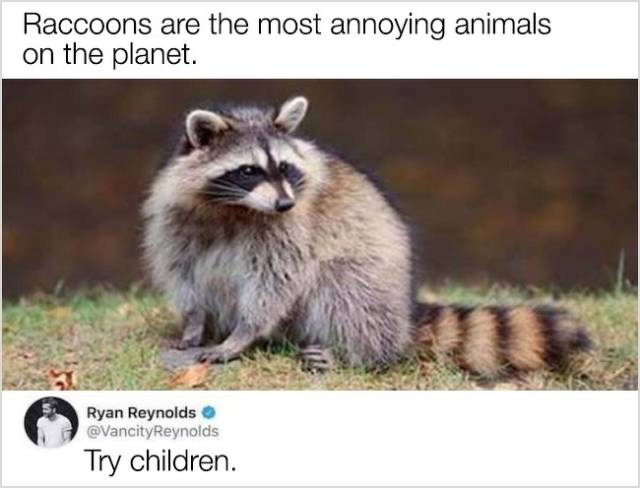 Their Humor Has A Slight Dark Twist