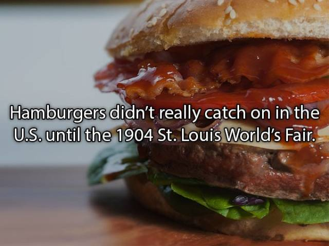 Unhealthy Facts About Burgers