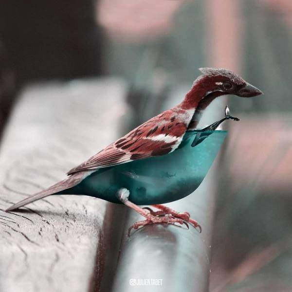 This Digital Artist Creates Some Unreal Animals Which Have Something Amazing About Them