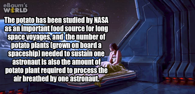 Up Your General Knowledge with These Fun Facts