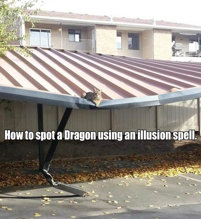 Gamers Will Get A Kick Out Of These Pics