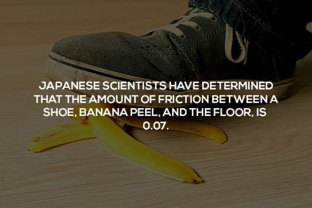 Random But Useful Science Facts