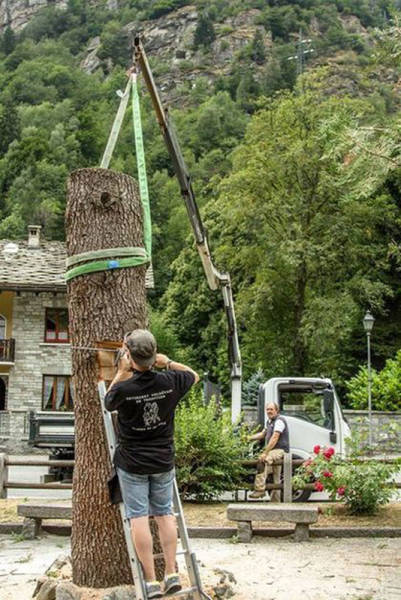 It Was A Tree, And Now It Is A Sculpture
