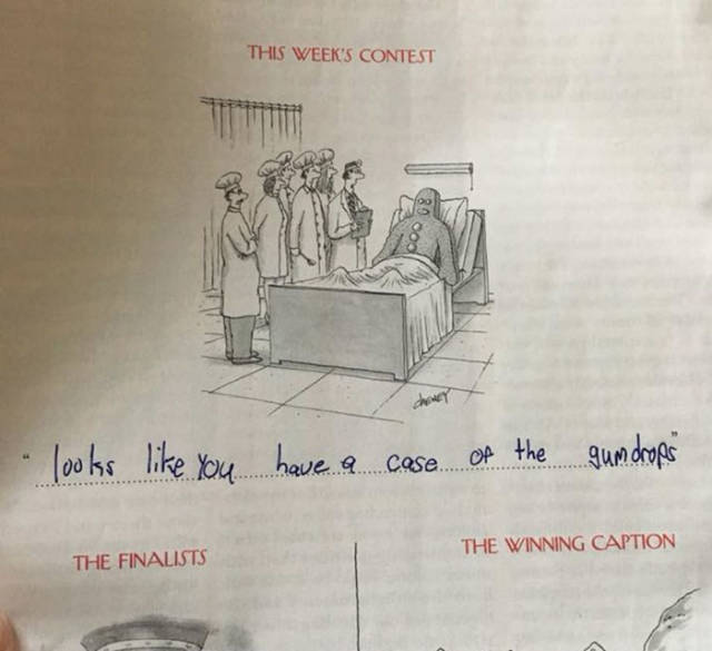 That Family Surely Has Some Incredible Talent In Writing Cartoon Captions!