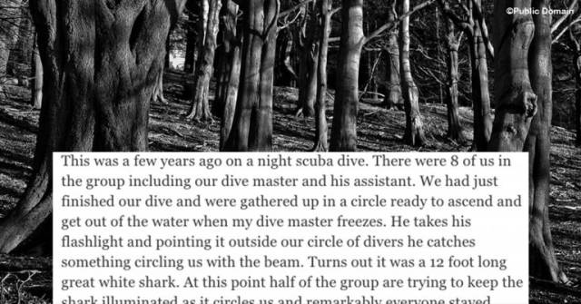 Scary Stories To Tickle Your Nerves