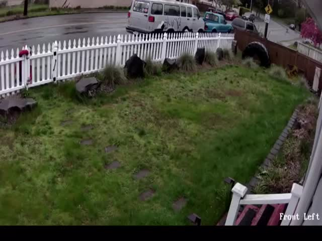 Porch Thief Gets Caught Red-Handed