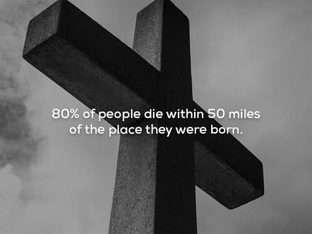 Scary Facts That You'd Better Not Read