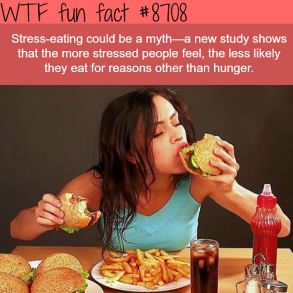Boredom And These Facts Don't Live Together
