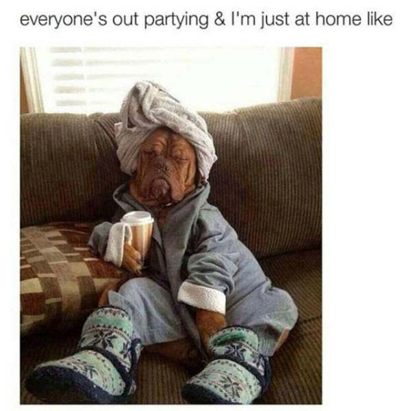 Memes For When You'd Much Rather Stay Home Than Make Any Plans