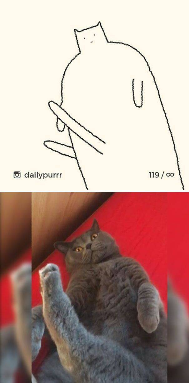 """Stupid Cat Drawings"" Are Still Funny And Accurate Cat Drawings!"