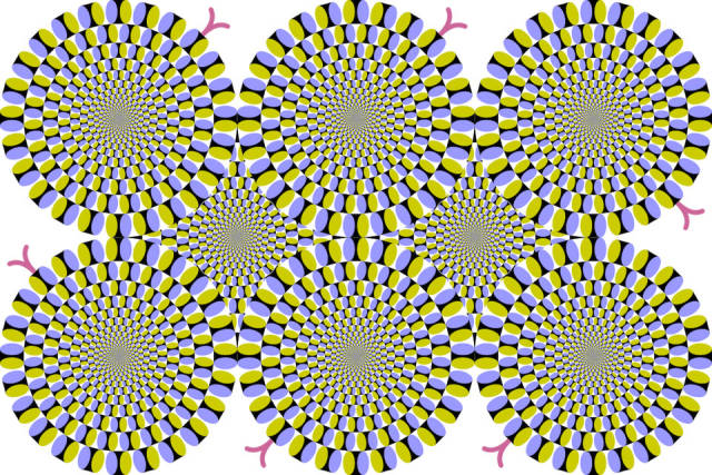 Optical Illusions Always Make Everyone Wonder