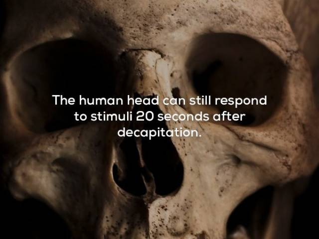 Some Pretty Creepy Facts