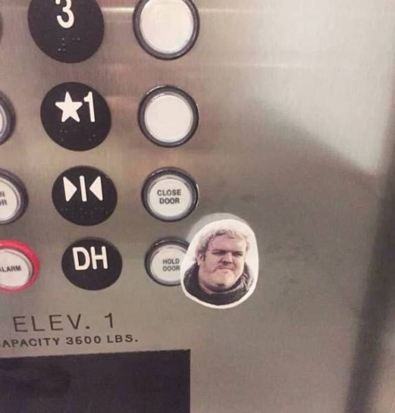 Elevators Have A Lot Of Space For Creativity In Design