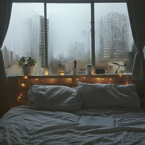 Coziness Is What We All Need Once In A While