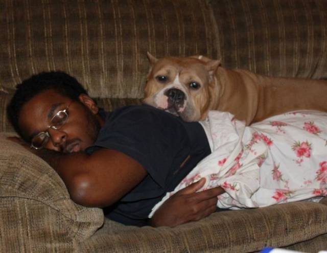 Dogs Will Always Make Sure You Know They Love You