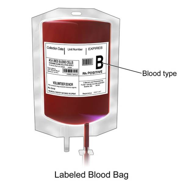 Blood Type Has To Say A Lot About You