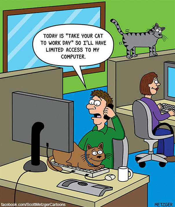 Cat Cartoons Made By An Artist With A More Than 20 Years Of Experience